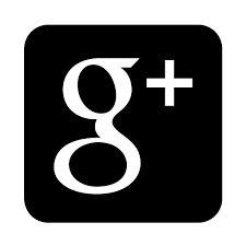 Výsledek obrázku pro logo g+